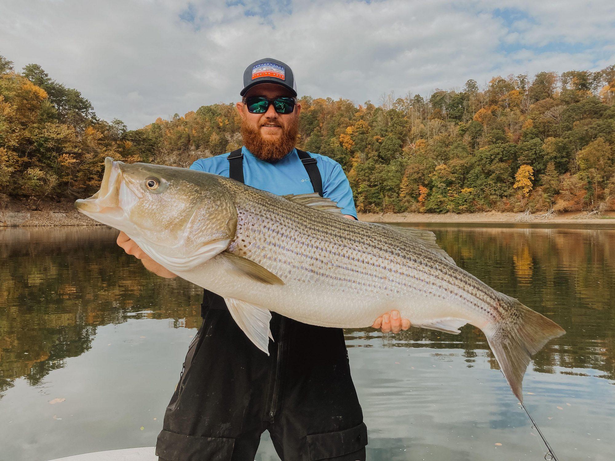 trophy-striper-fishing-lake-lanier-guide-boat
